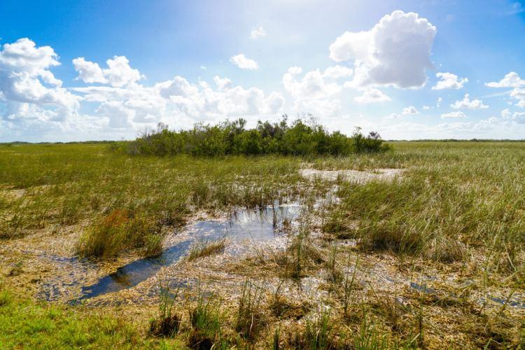 Everglades National Park3