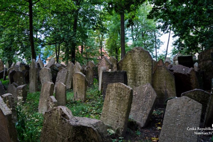 Old Jewish Cemetery4