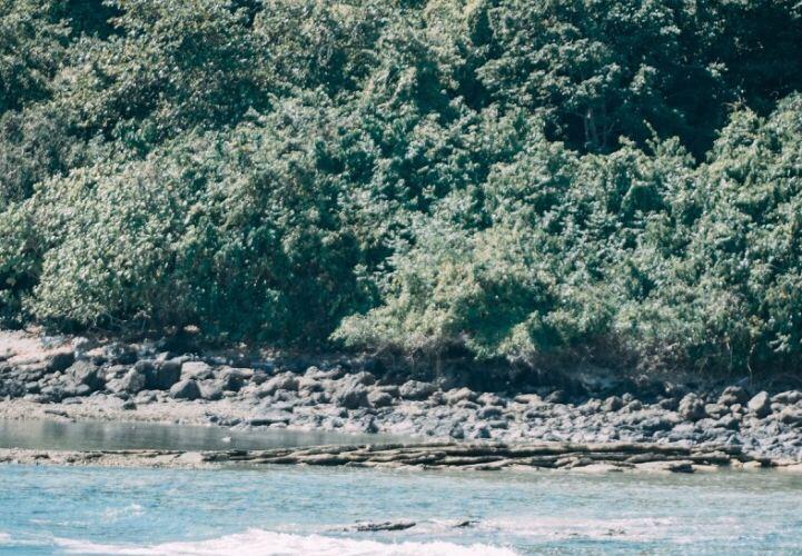 弗蘭克蘭德群島4