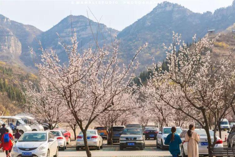 Qi Mountain Scenic Area3