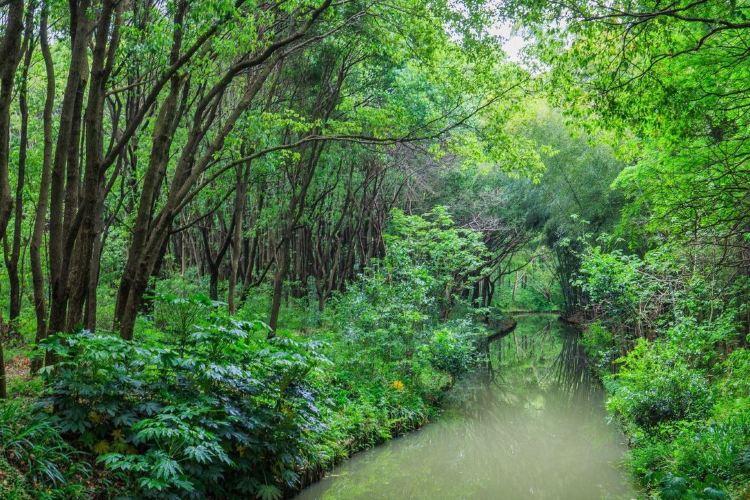 퉁리 습지공원1