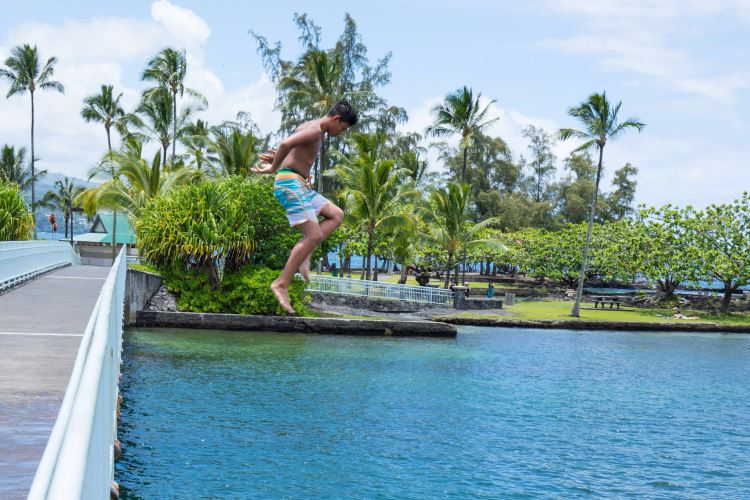 Coconut Island1