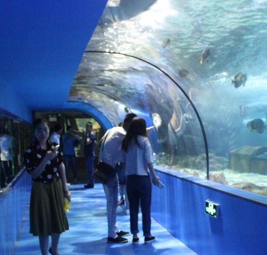 奇趣海洋世界3