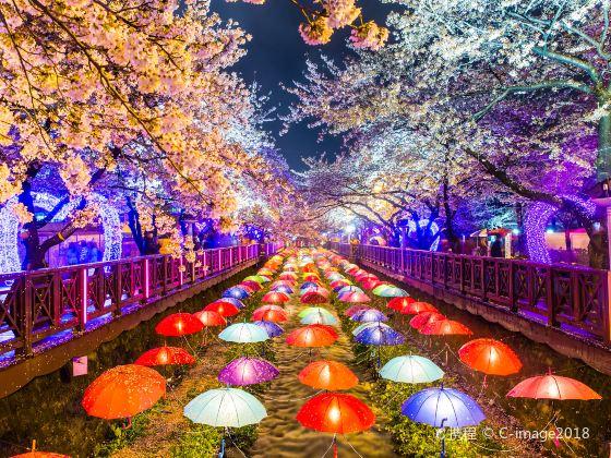 용두산 공원