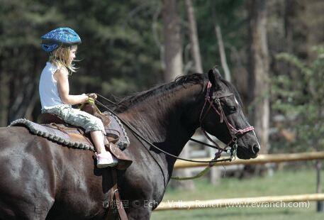 Ponylandia
