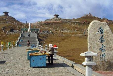 Tangfan Trackway