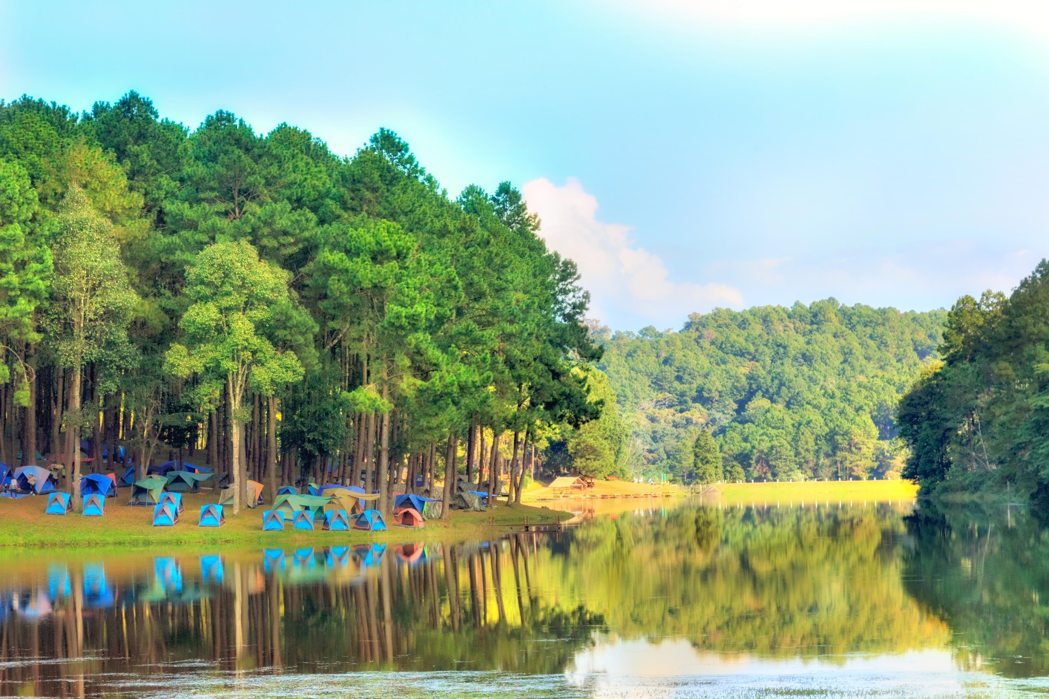 สวนป่าตามพระราชดำริปางตอง 2 (ปางอุ๋ง)