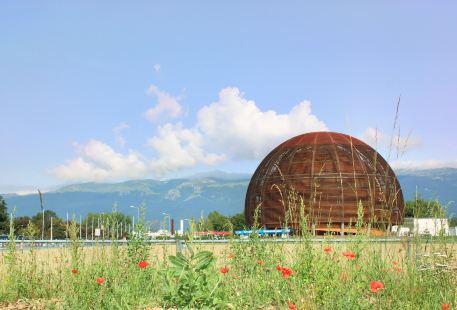 歐洲核子研究組織