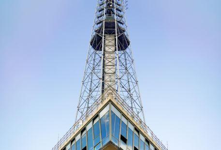 巴西利亞電視塔