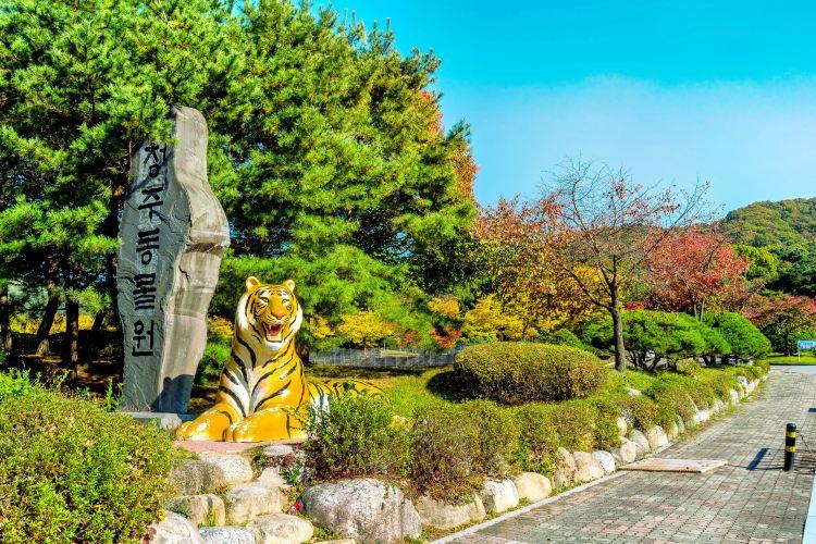 Cheongju Zoo 청주동물원