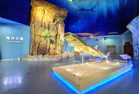 生命奧秘博物館