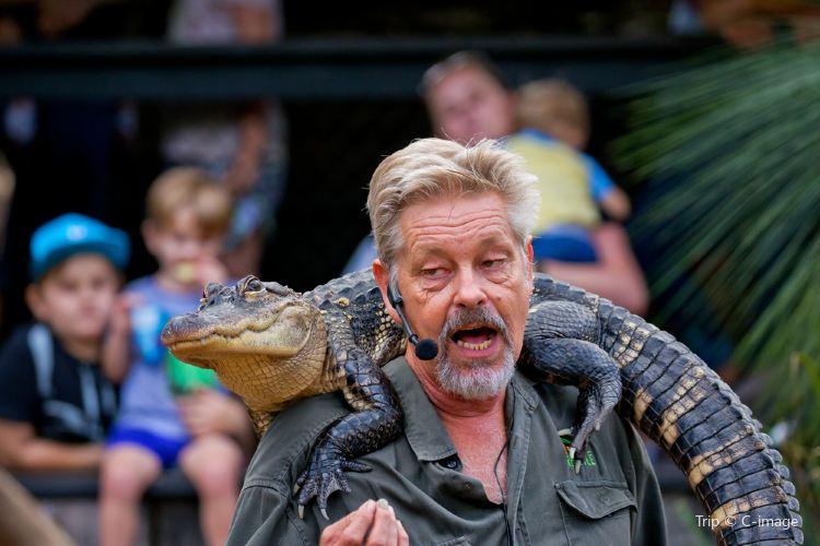 Australian Reptile Park1