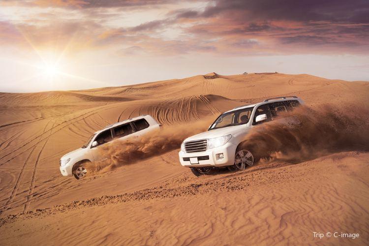 Desert Safari3