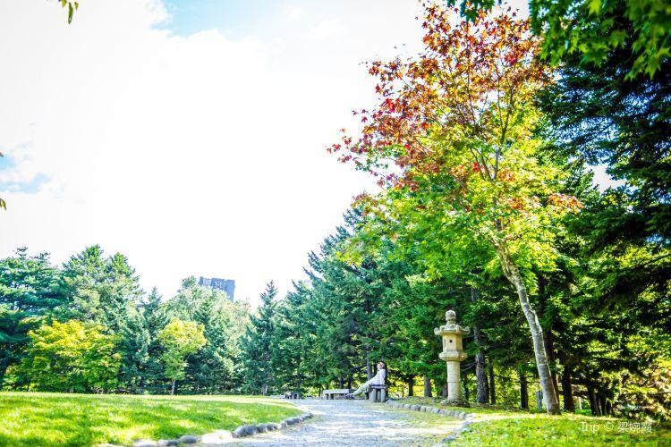 Nakajima Park1