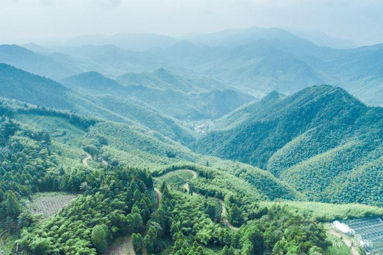 화딩 국가산림공원1