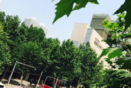 Xi'an Meishu Xueyuan Xibu Gallery