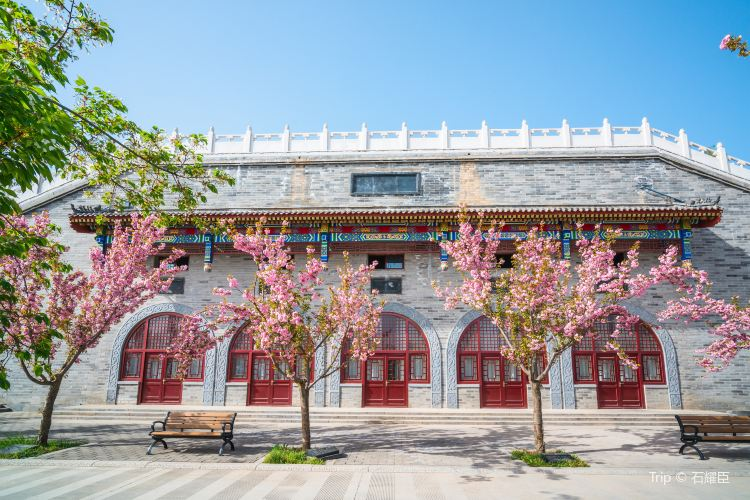 Jintai Taoist Temple1