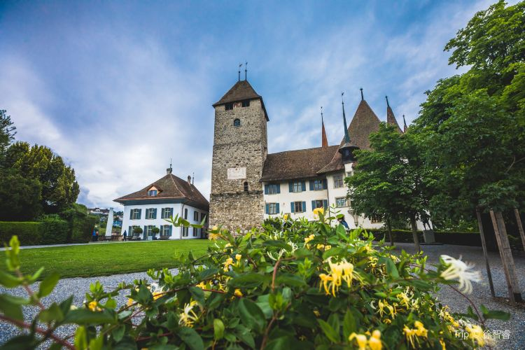 Spiez Castle1