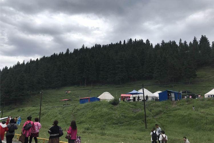 南山牧場3