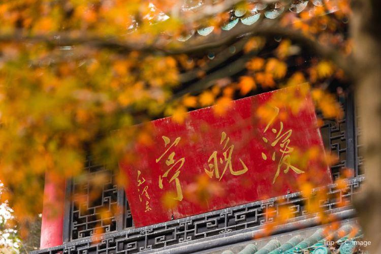 Autumn-Admiring Pavilion2