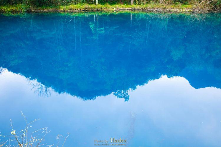 Wolong Pond4