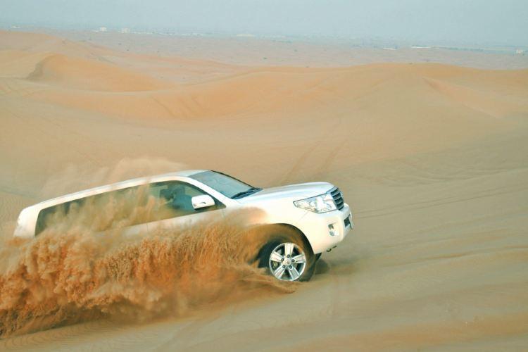 Sharjah Desert Park3