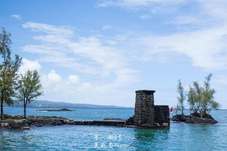 Coconut Island2