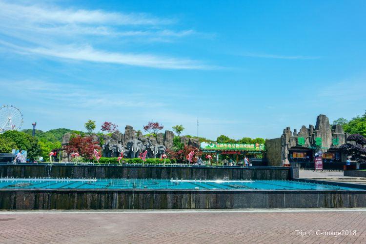 Changsha Ecological Zoo4