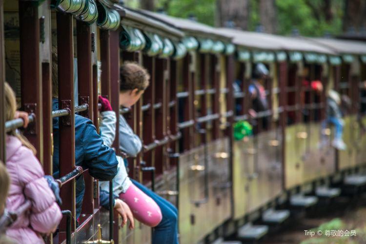 Puffing Billy Railway1