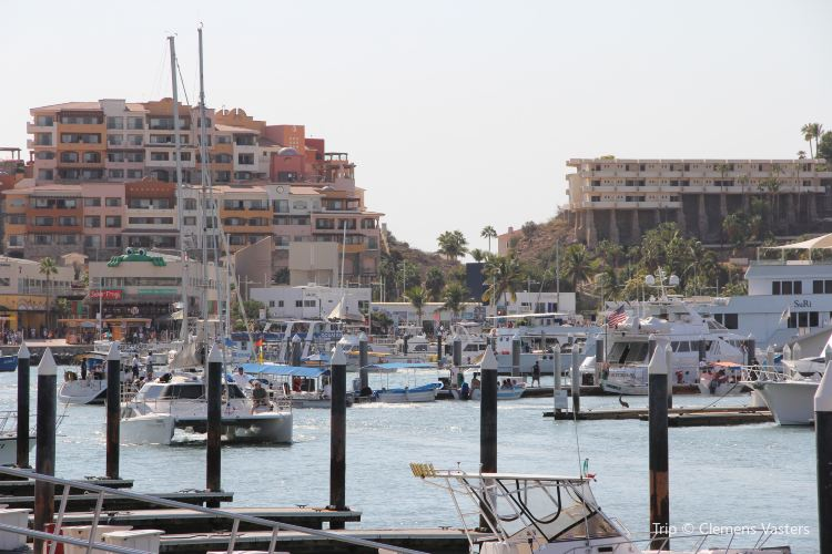 Marina Cabo San Lucas3