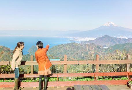 伊豆國全景公園