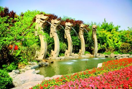The World Best Spring Scenic Area