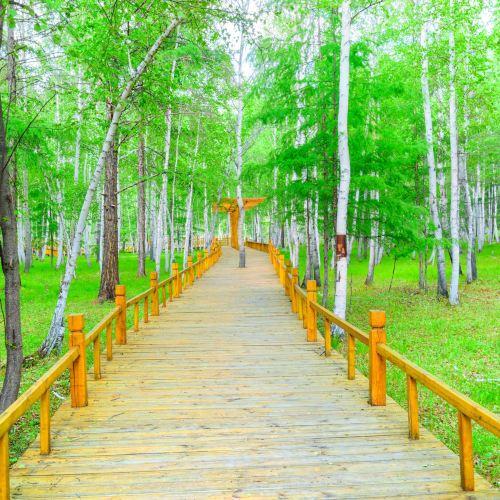 백화림관광구