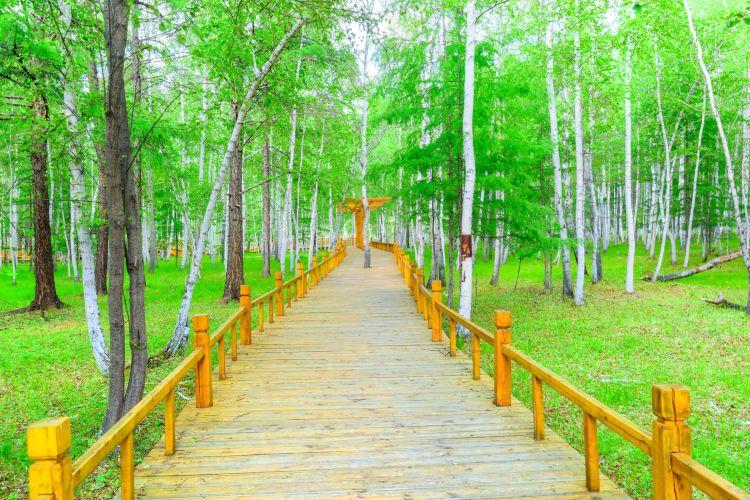 백화림관광구1