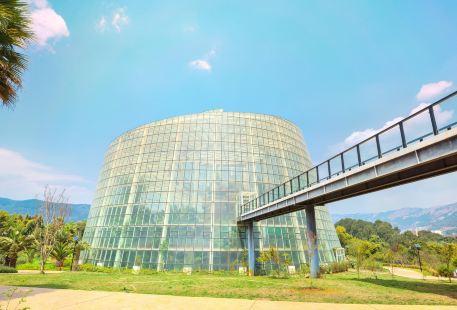 Kunming Botanical Garden