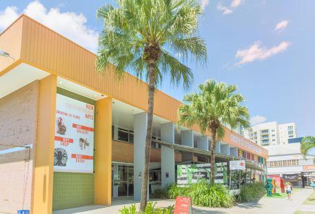 Centre of Contemporary Arts Cairns