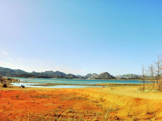 Haifeng Wetland