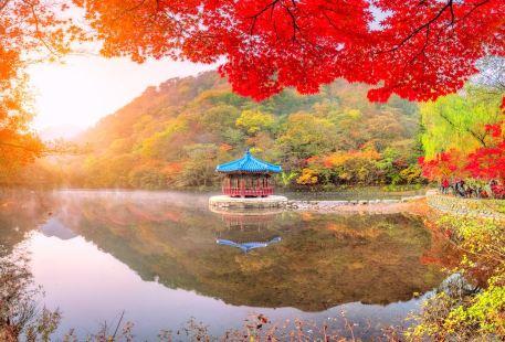 내장산국립공원