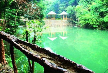Longmen Forest Park