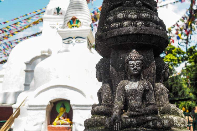 斯瓦揚布納寺2