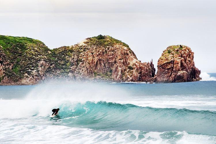Cape Woolamai3