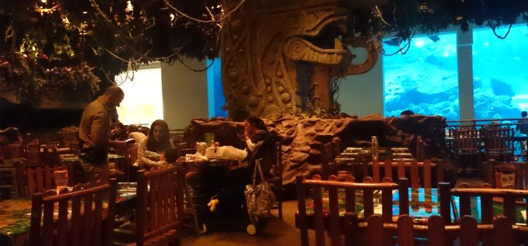 Rainforest Cafe1
