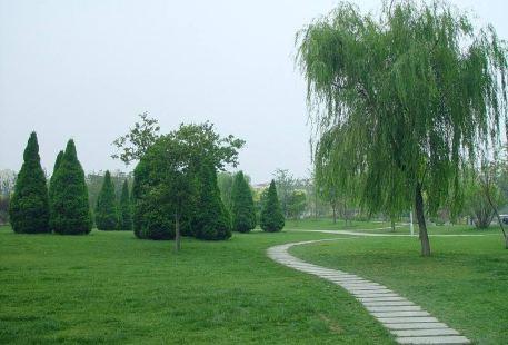 Hedong Park