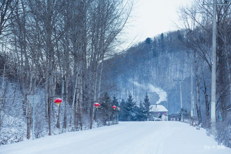 Snow valley2
