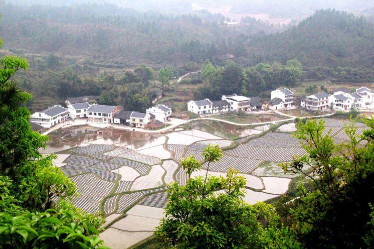 Muyu Mountain Sceneic Area4