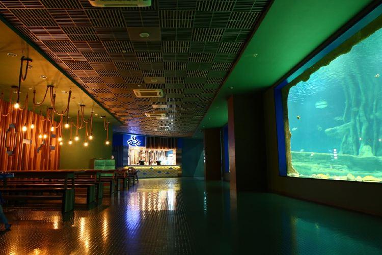 Moscow Oceanarium aka Moskvarium3