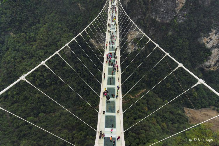Zhangjiajie Grand Canyon Glass Bridge3