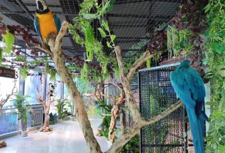 潤達奇妙萌寵動物園
