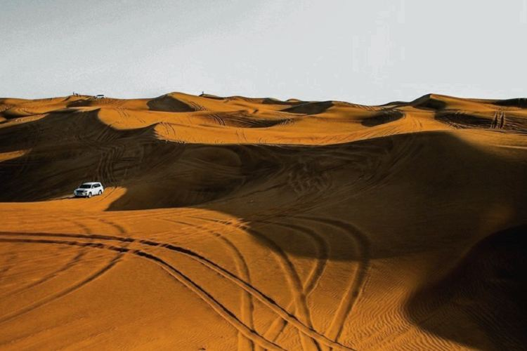 Sharjah Desert Park4