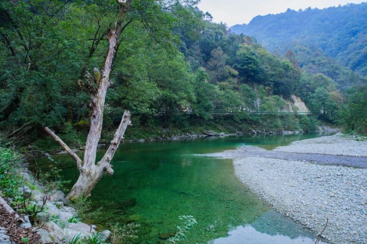 Yangba Natural Scenic District4